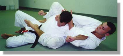 Cesar & Rodrigo Gracie demonstrating a choke from behind.